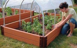 Как правильно сделать парник для помидоров своими руками