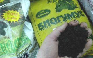 Что такое биогумус и как его использовать на огороде