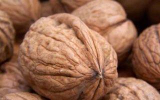 Как правильно хранить очищенные грецкие и другие орехи в домашних условиях