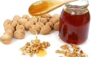 Польза и вред орехов с мёдом